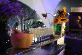http://www.splashandtickle.com/uploads/images/pages/mood-shot-bar.jpg
